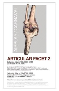 Articular Facet at Collaboraction CARNAVAL